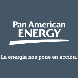 PAN AMERICAN ENERGY NL